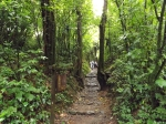More jungle path.