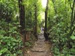 More jungle path.